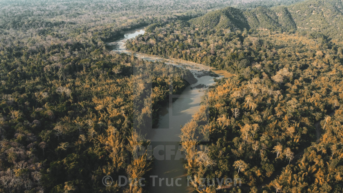 """""""Cat Tien forest from the sky."""" stock image"""