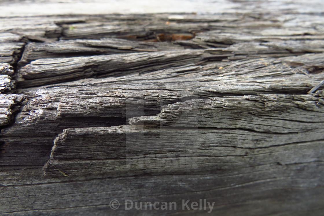"""A very weathered old railway sleeper."" stock image"