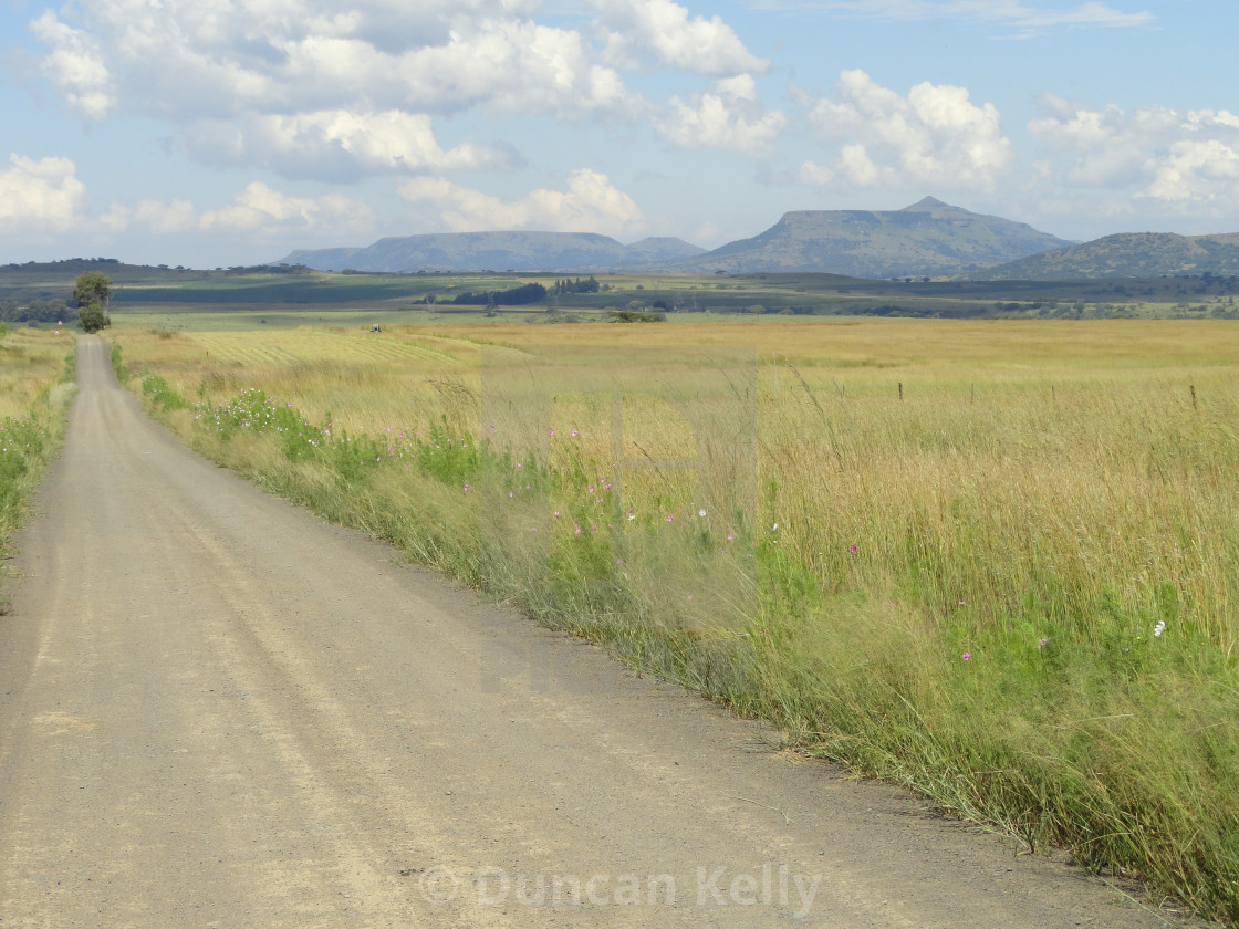 """A peaceful, quiet gravel road along the Biggarsberg."" stock image"