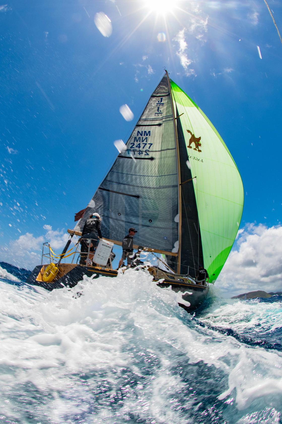 """""""J-aguar at Antigua Sailing Week"""" stock image"""
