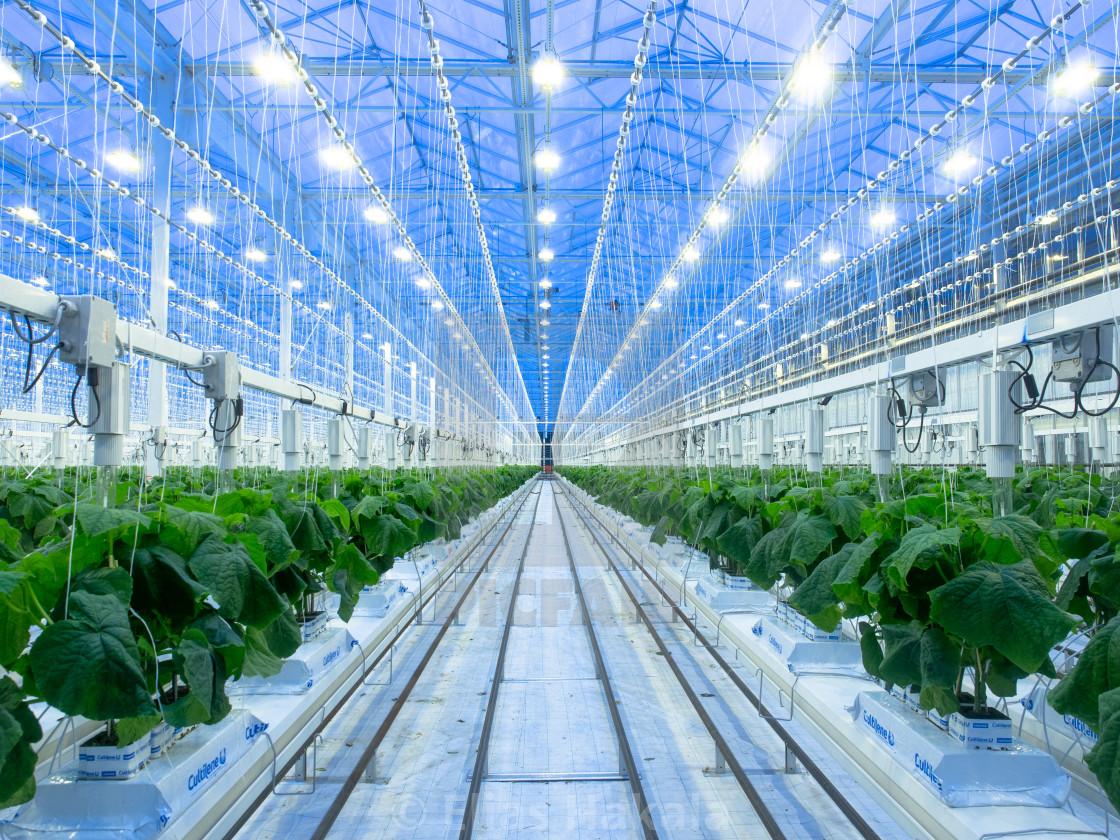 """A futuristic greenhouse"" stock image"
