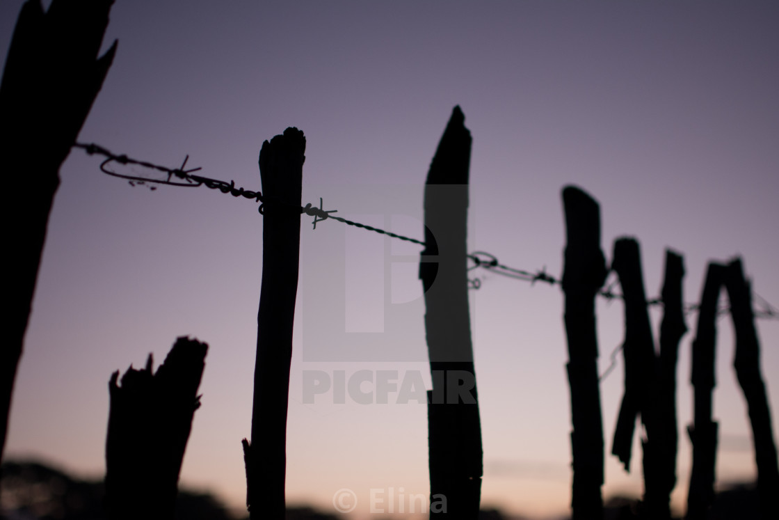 """Barbed wire fence"" stock image"