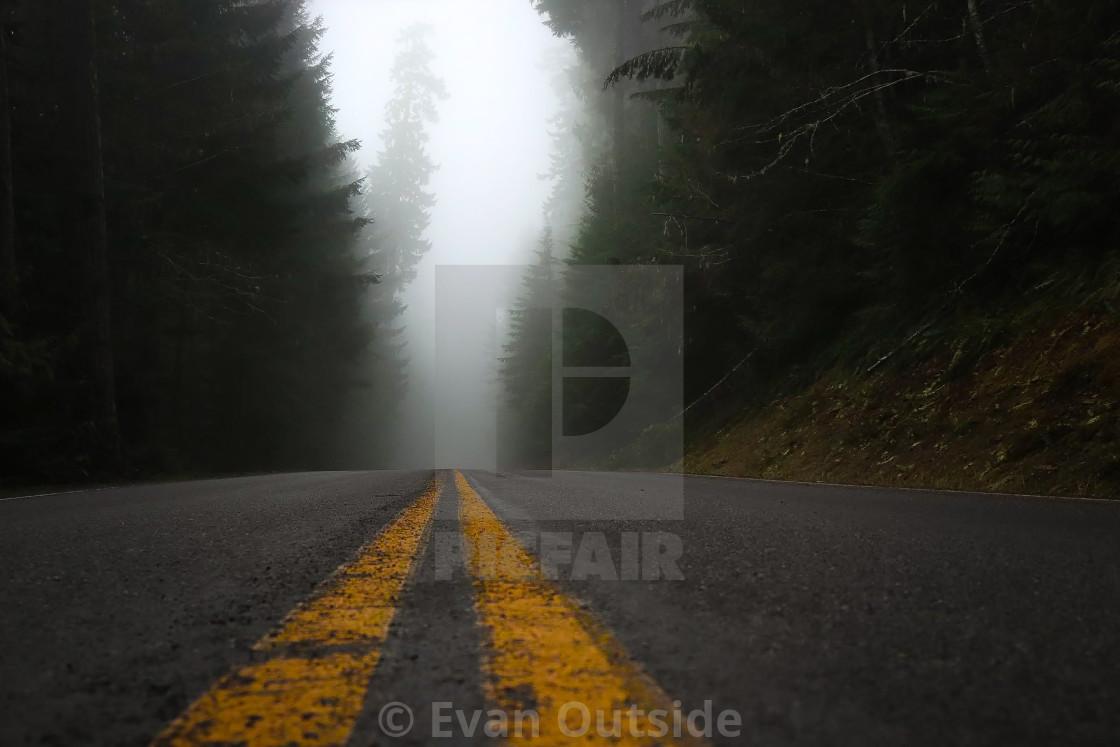 """""""Foggy morning - Olympic National Park, Washington"""" stock image"""