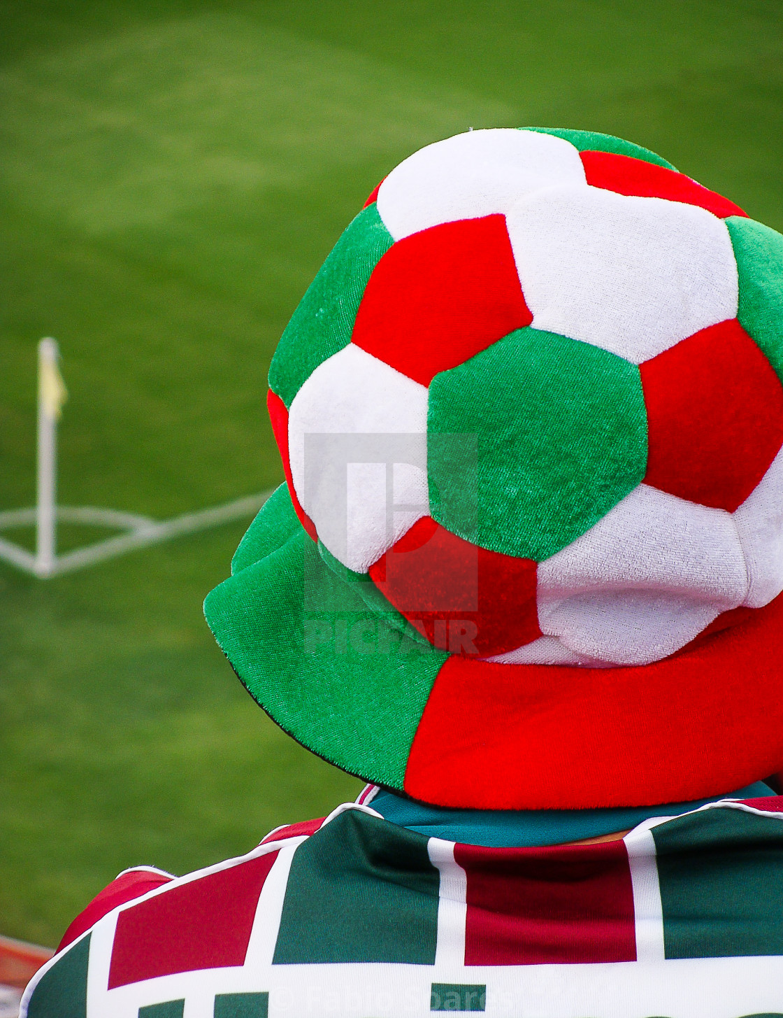 """Football supporter"" stock image"