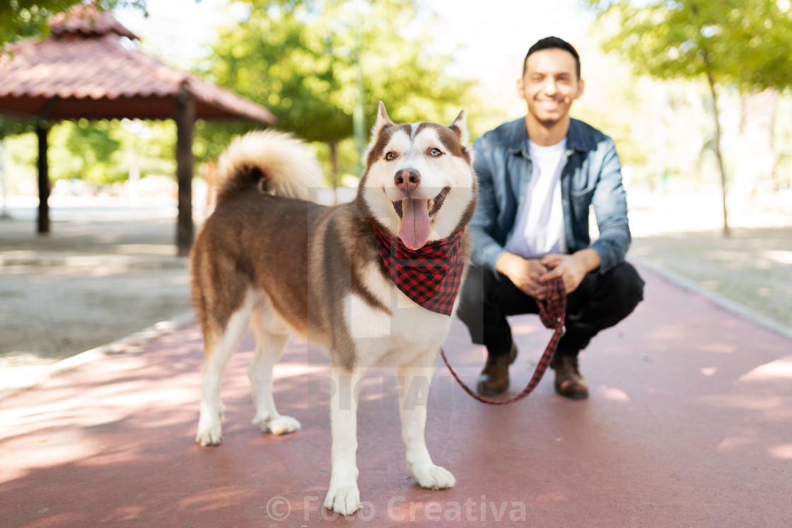 """Big brown dog and an adult man smiling in the park"" stock image"