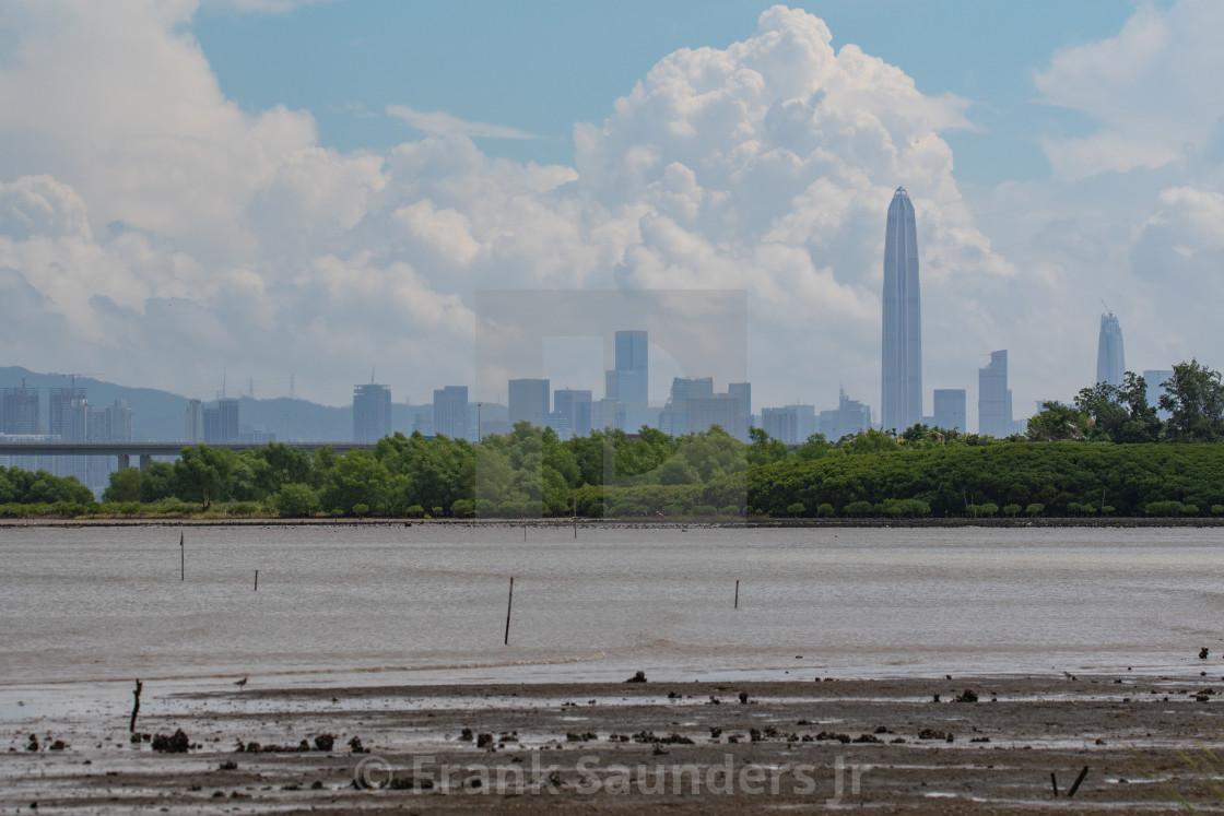 """""""Shenzhen Skyline"""" stock image"""