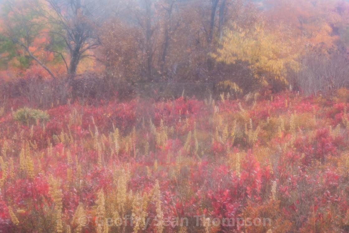 """""""Appalachian Autumn"""" stock image"""