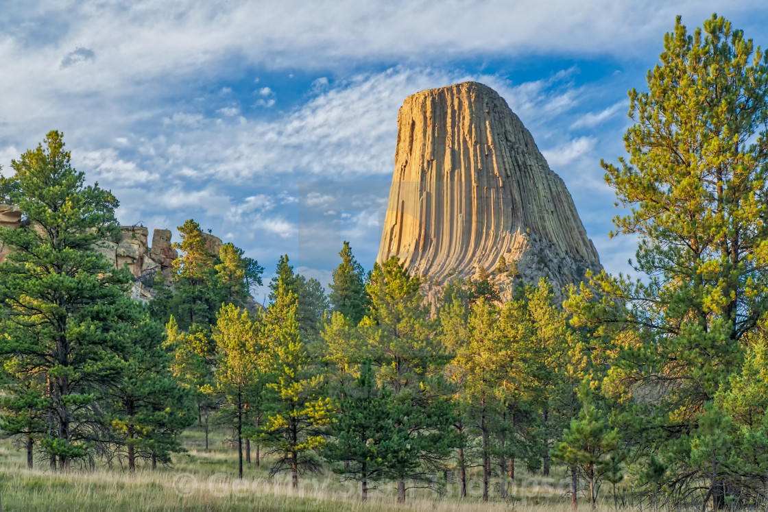 """Devils Tower"" stock image"