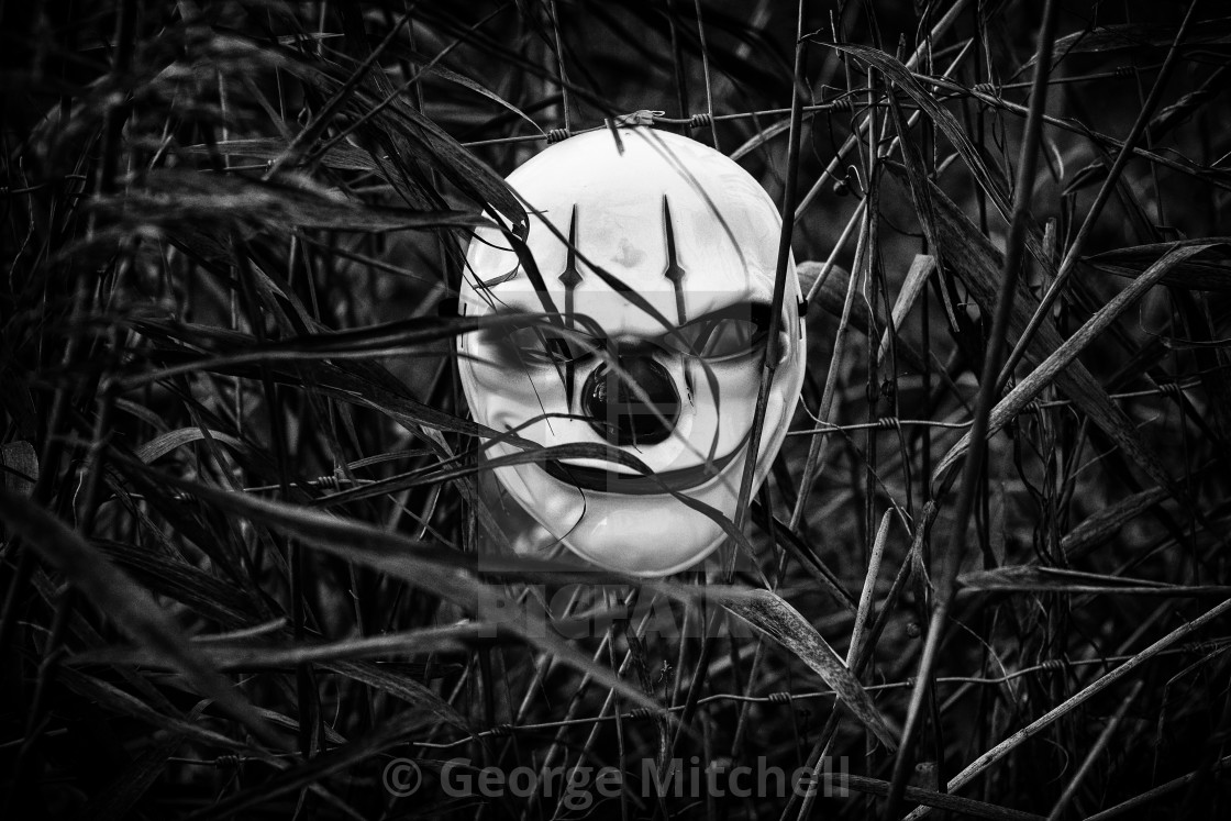 """""""Scary Clown Mask noticed in hedgerow."""" stock image"""