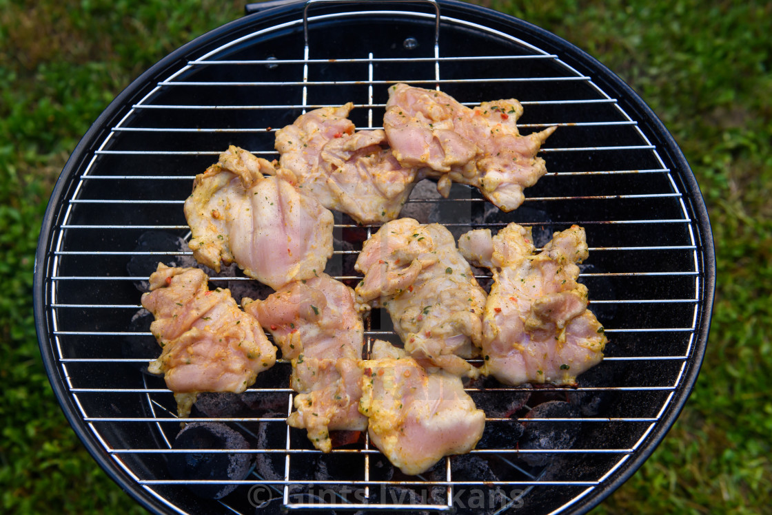 """Chicken shashlik meat ready for barbecue."" stock image"