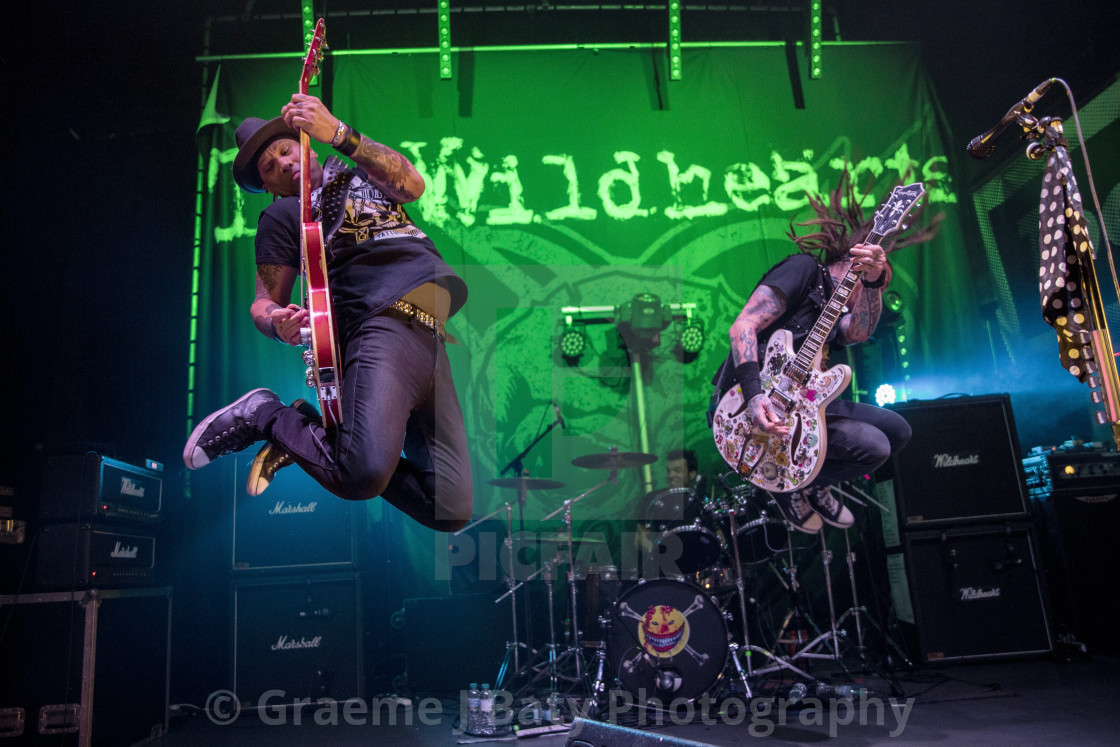 """The Wildhearts - Ginger Wildheart and CJ Wildheart"" stock image"