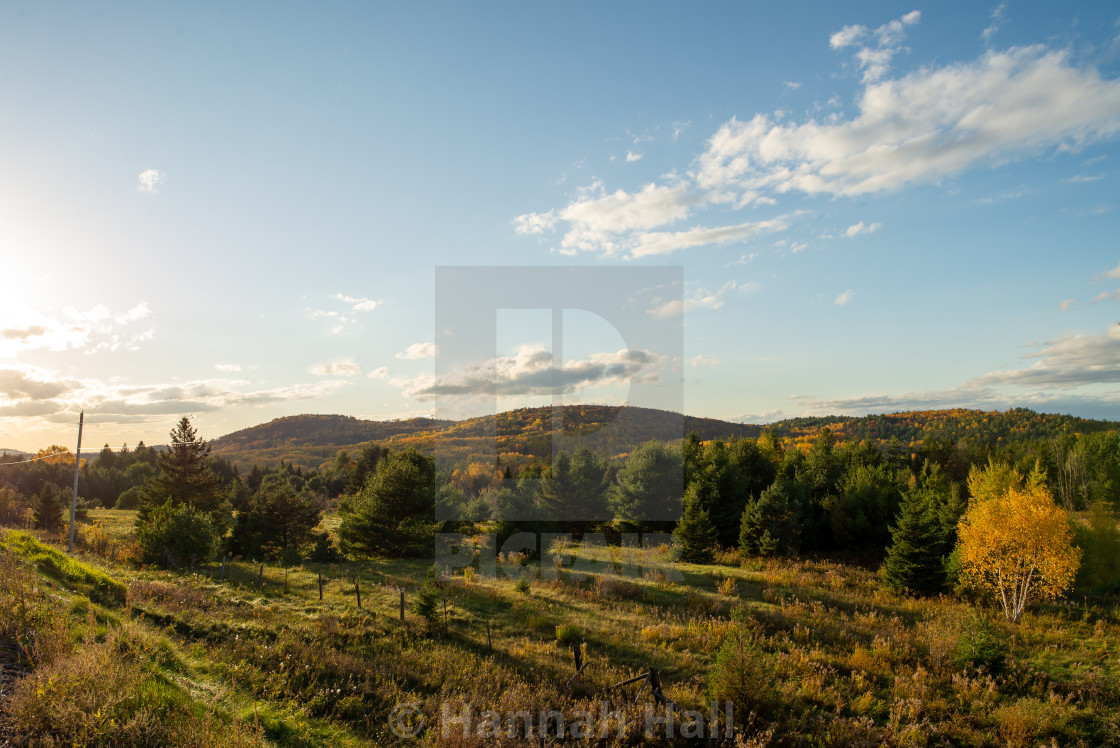 Wilno Lookout