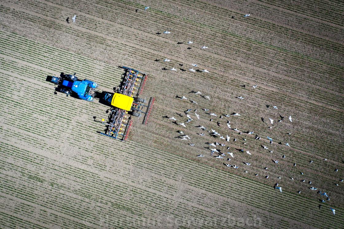 """""""Aussaat von Getreide-Drohnenaufnahme Soenke-Nissen-Koo"""" stock image"""