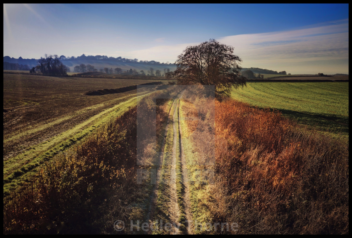 """The Ridgeway at Britwell Salome"" stock image"
