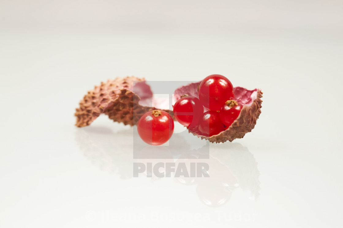 from £10.00