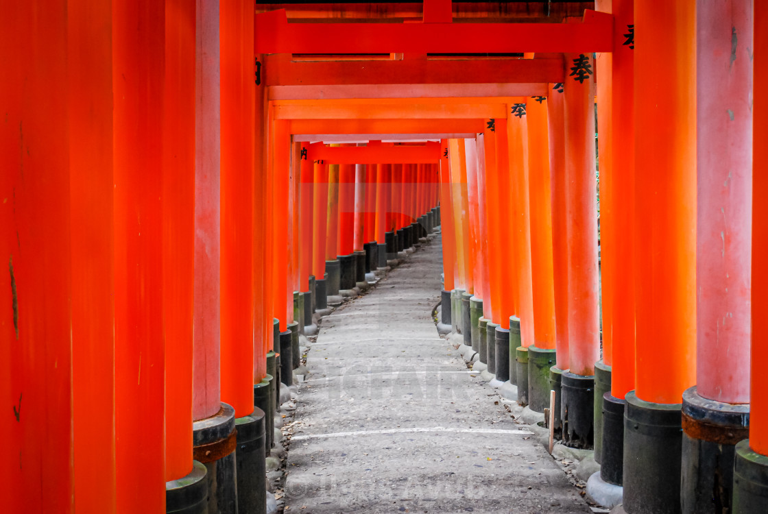 """Fushimi Inari Shrine, Kyoto, Japan"" stock image"