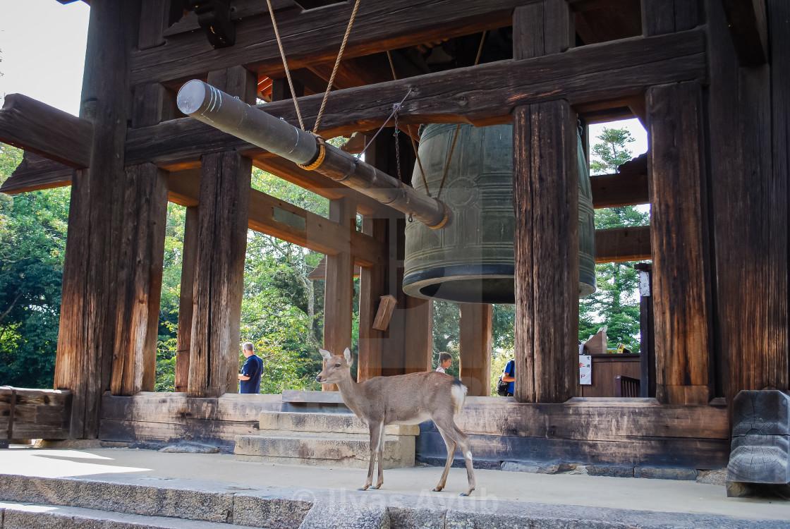 """The Bell Tower in Todaji, Nara, Japan"" stock image"