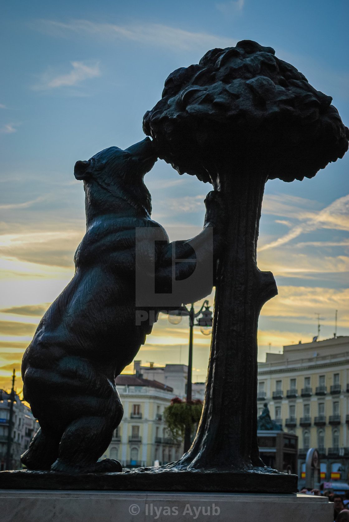 """""""The Statue of the Bear and the Strawberry Tree, Madrid, Spain"""" stock image"""