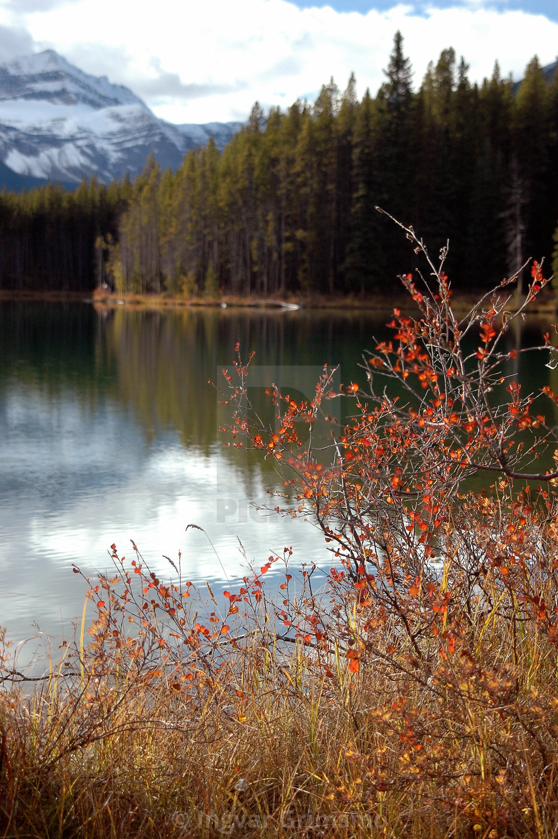 """""""Fall in the Rocky Mountains"""" stock image"""