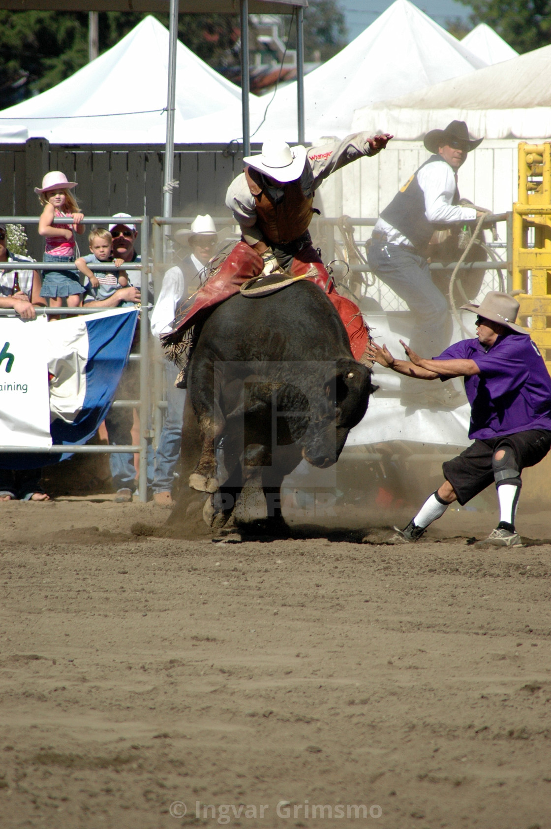 """""""Rodeo bull riding"""" stock image"""