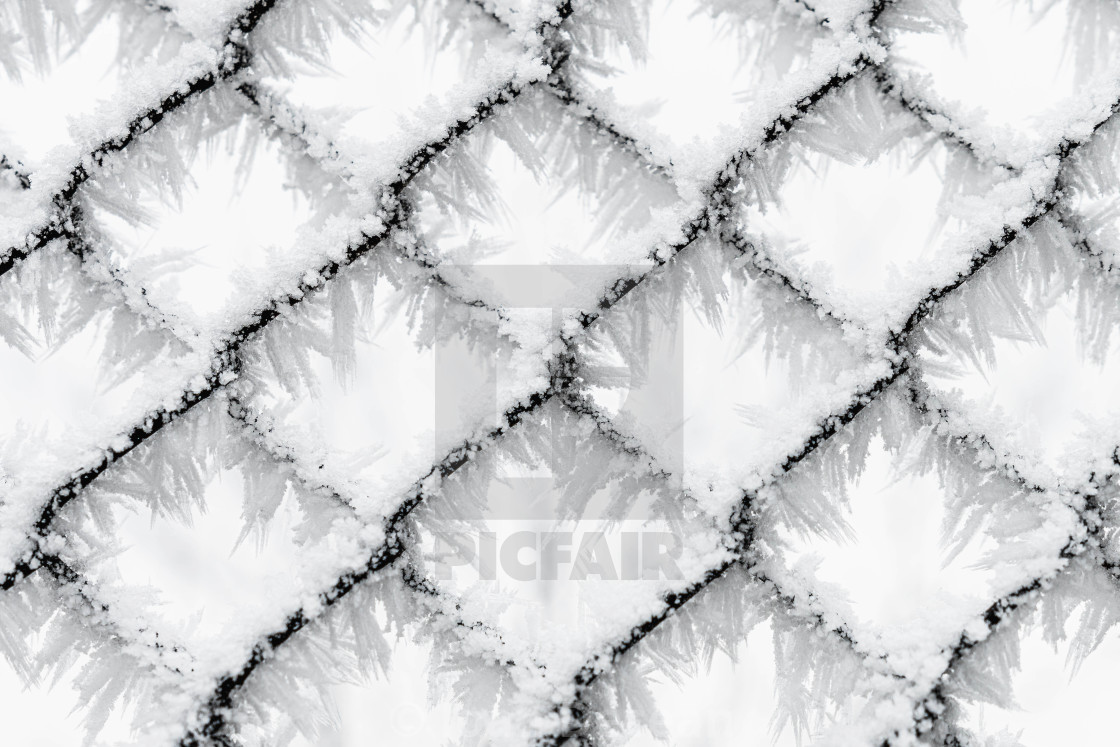 """""""Frozen Chain Link Fence"""" stock image"""