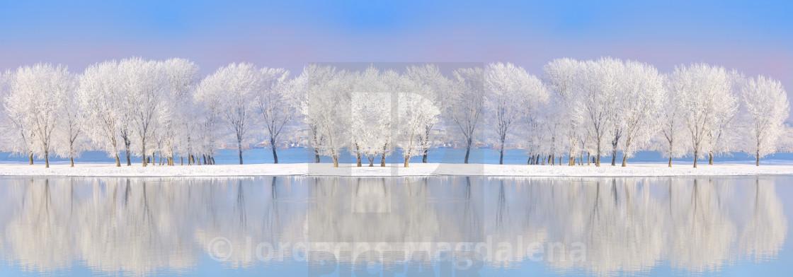 """""""Danube river in winter time"""" stock image"""