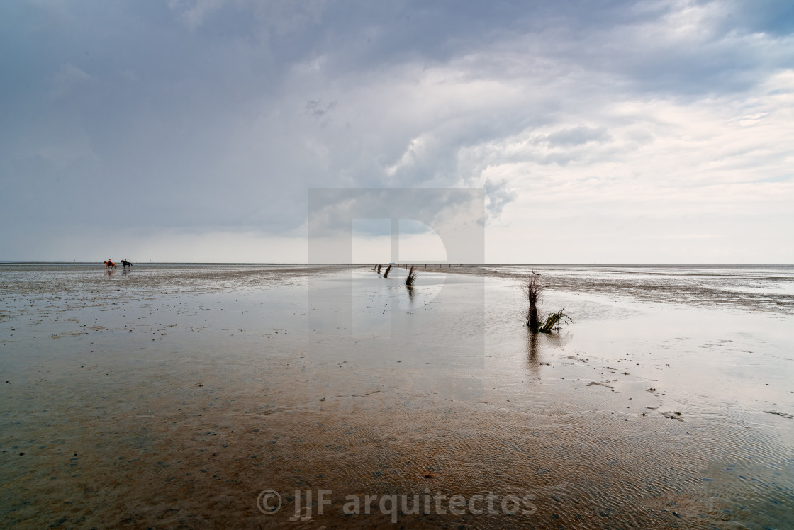 """""""Calm and tranquil seascape at the beach at low tide in Wadden Sea"""" stock image"""