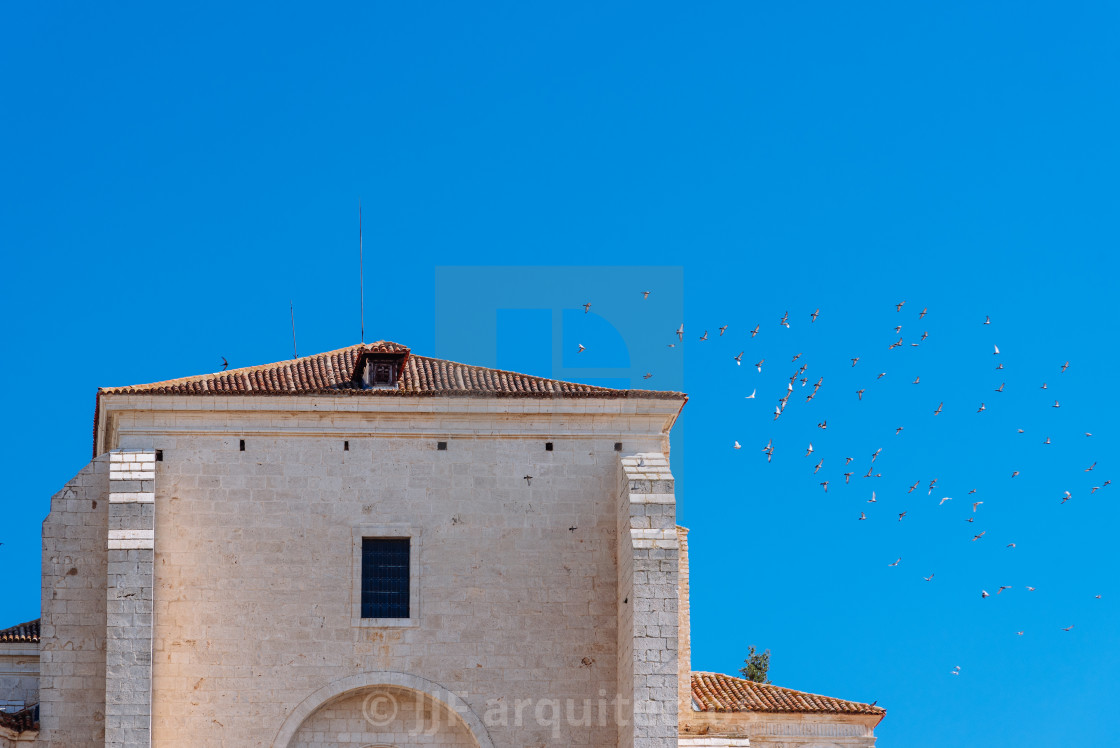 """""""The Church in Chinchon, Madrid, with a flock of birds"""" stock image"""