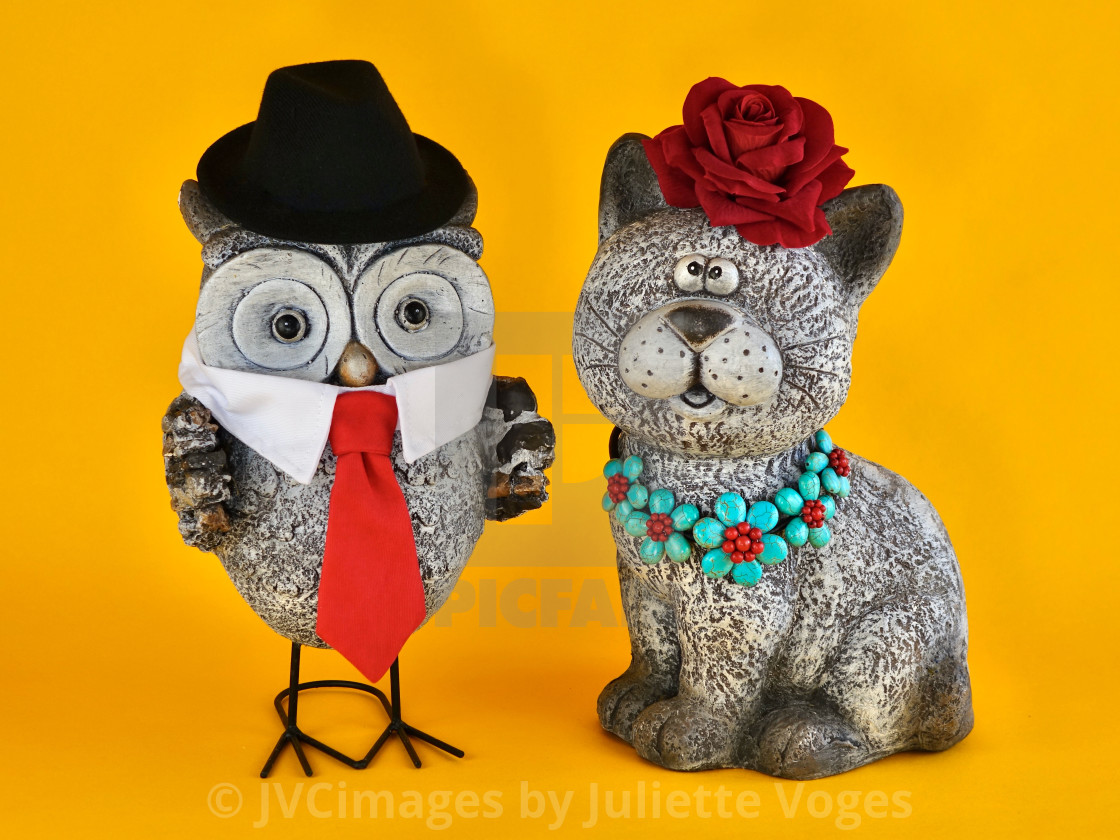 """""""The Owl & The Pussycat"""" stock image"""