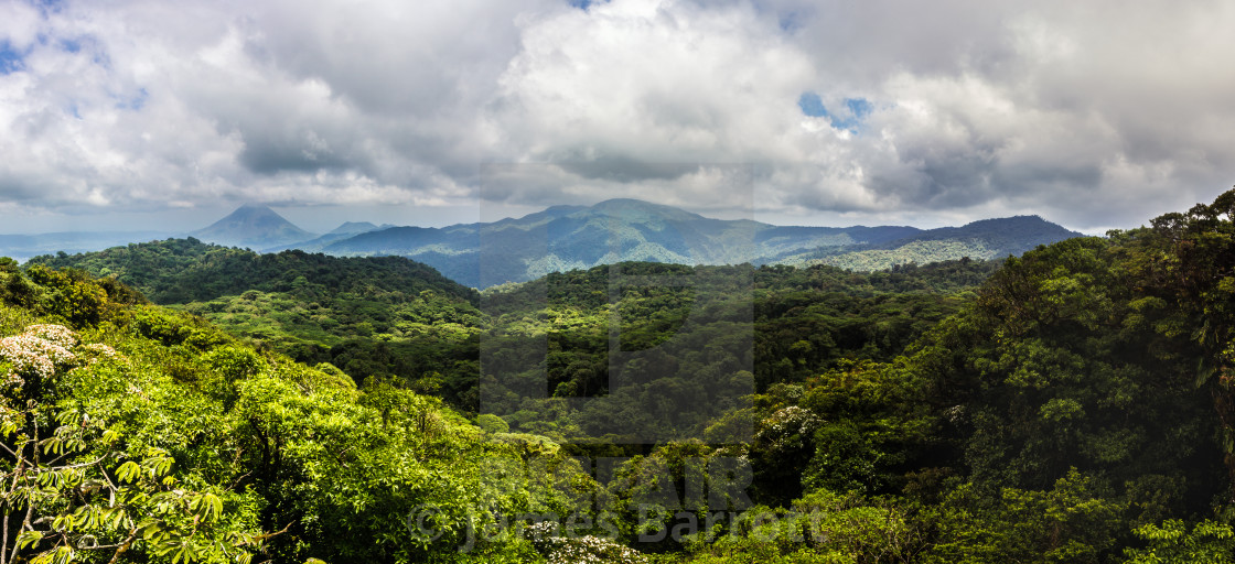 """Rainforest panorama"" stock image"
