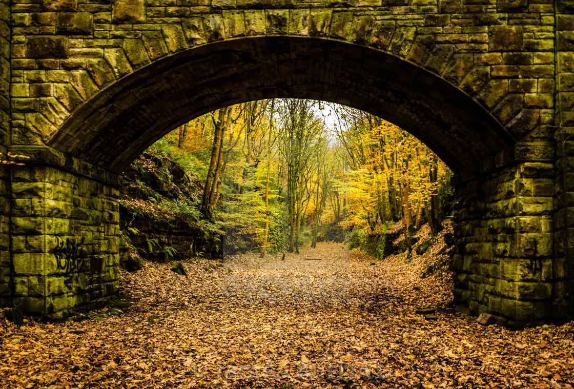 """Rippondens abandoned railway track."" stock image"
