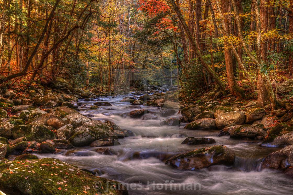 """""""November in Greenbriar"""" stock image"""