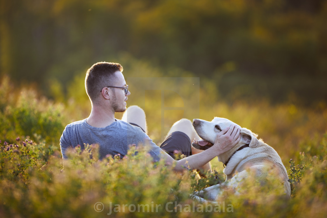 """""""Man with dog lying on meadow at sunset"""" stock image"""