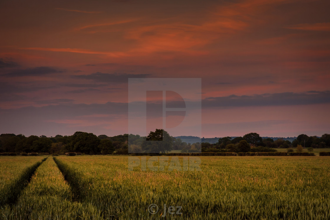 """""""Over the field and far away"""" stock image"""