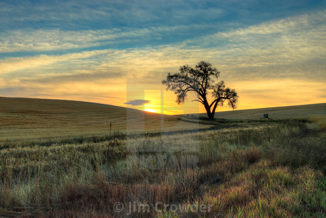 """Sunrise on the Palouse"" stock image"