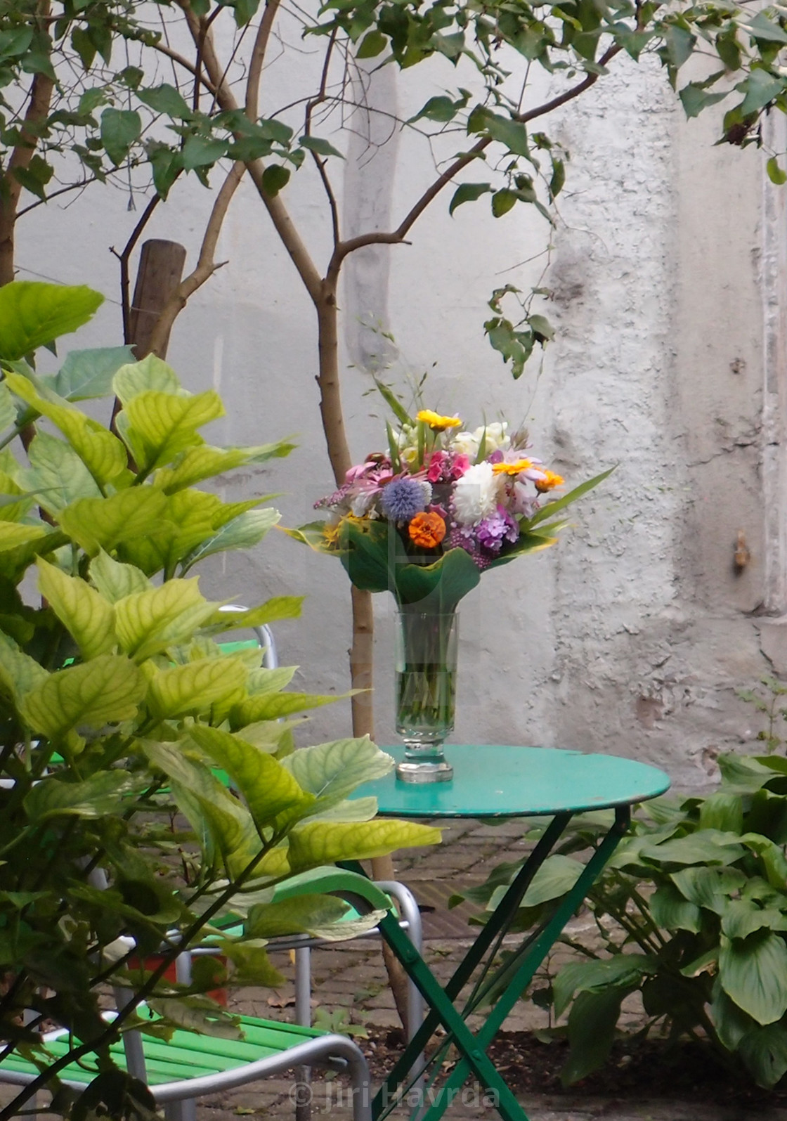 """A Bouquet"" stock image"