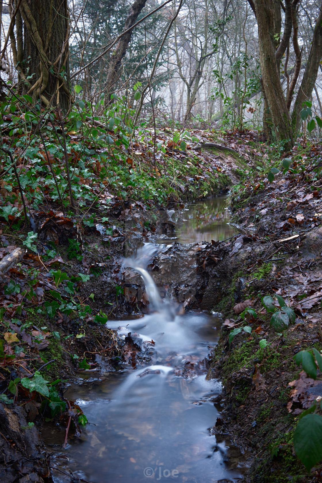 """Woodland Stream"" stock image"