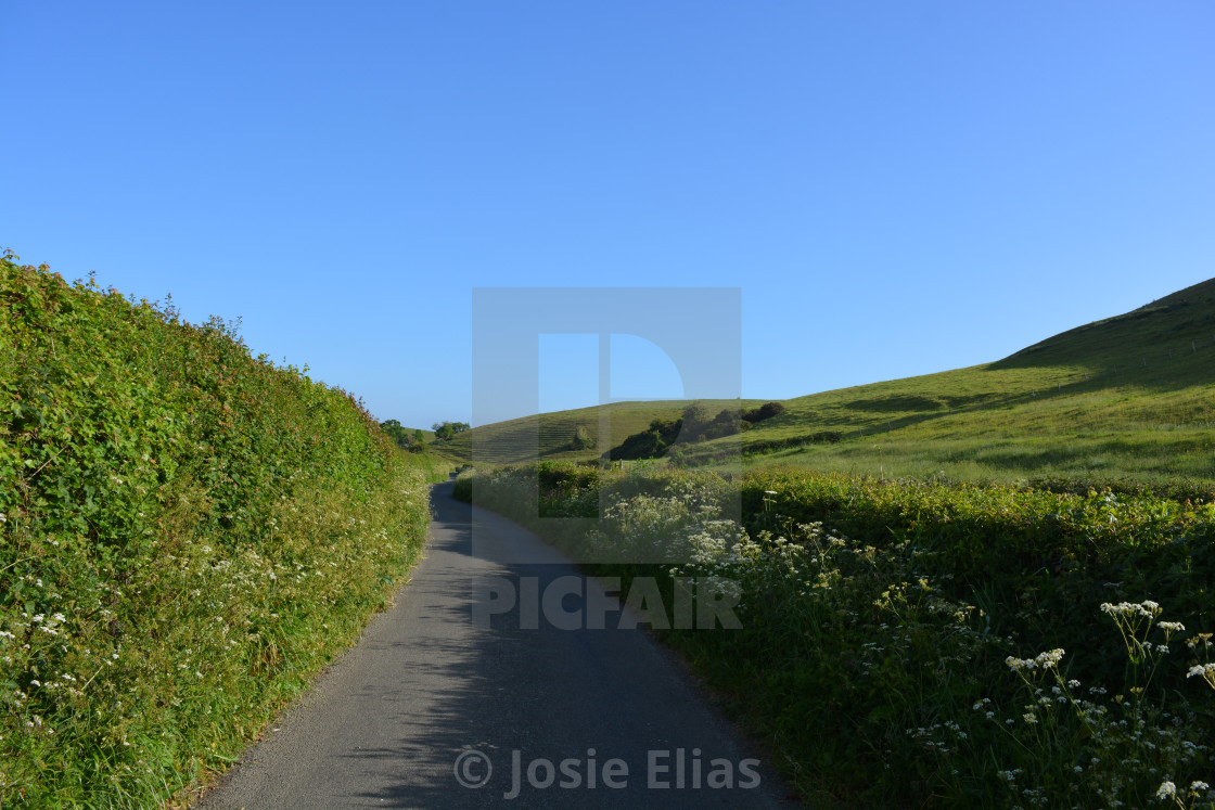 """""""Country lane in spring"""" stock image"""