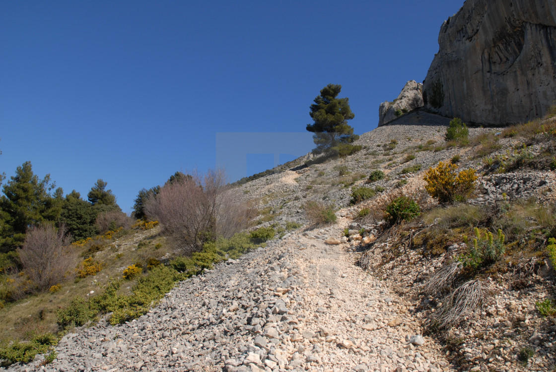 """""""Track on scree slope"""" stock image"""