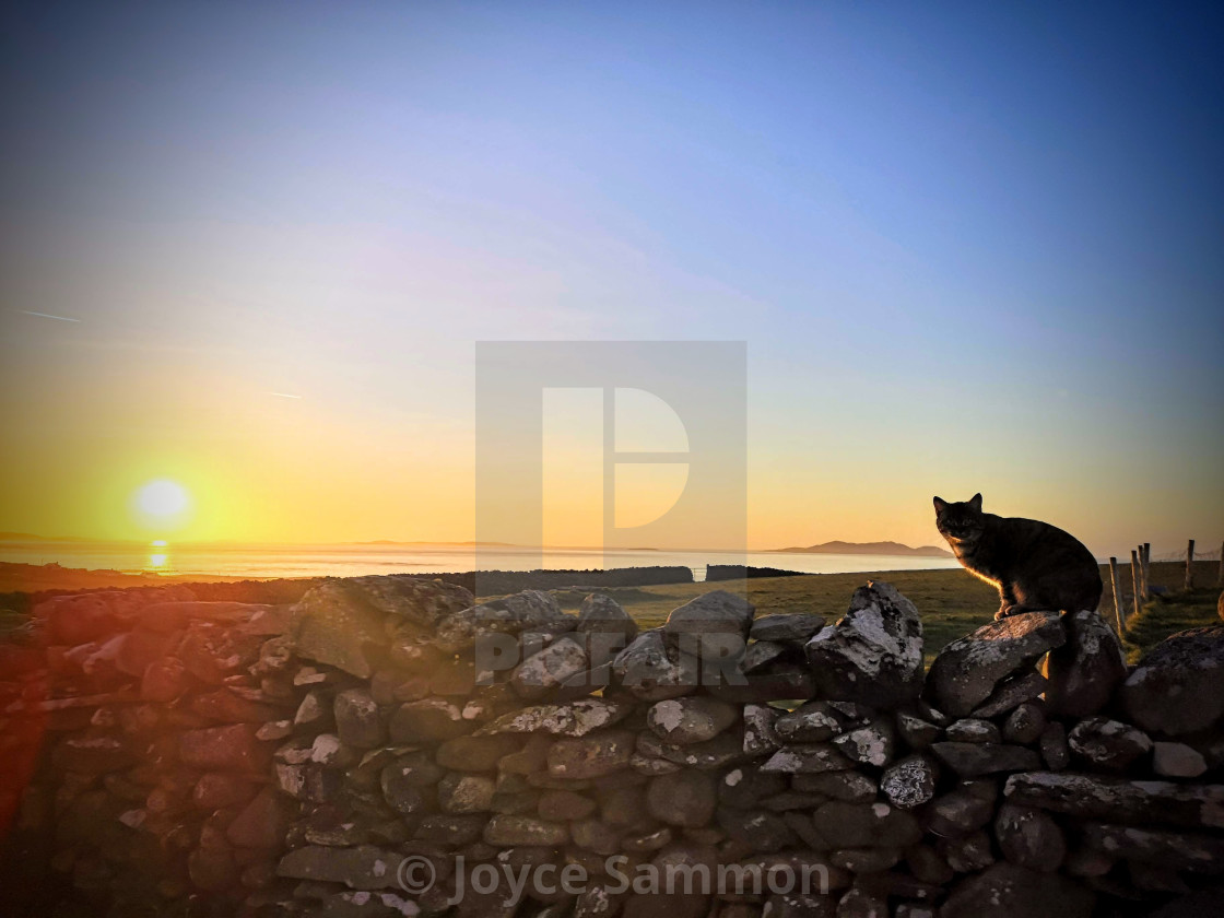 """""""A purfect sunset"""" stock image"""