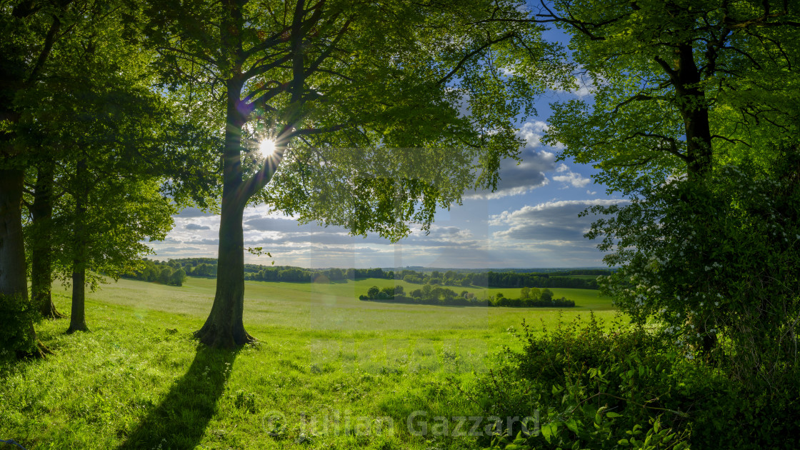 """""""View from Wheely Down near Warnford in the Meon Valley"""" stock image"""