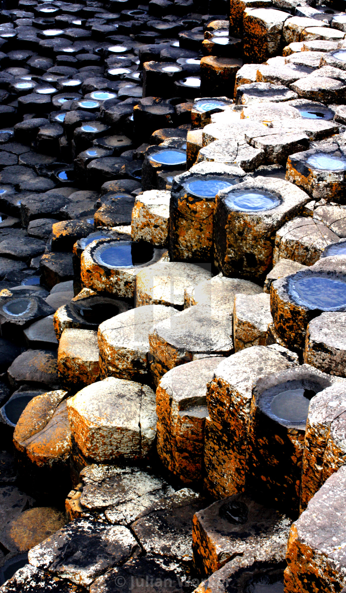 """Part of the Giant's Causeway in Northern Ireland"" stock image"
