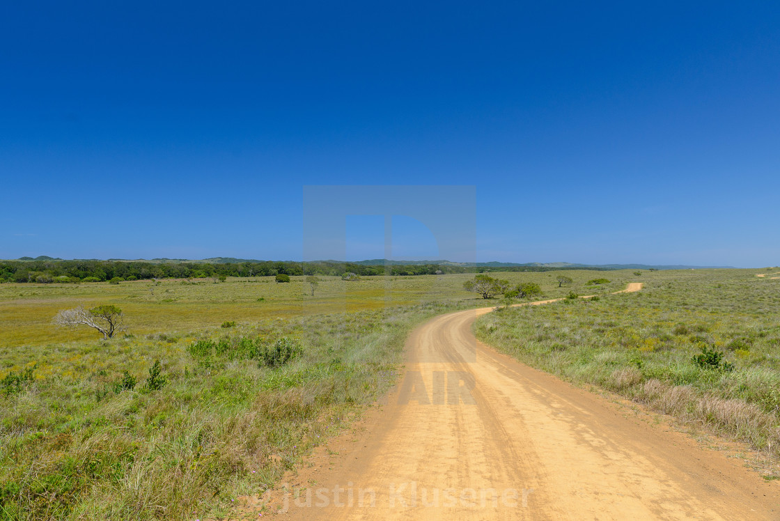 """Dirt road through game reserve"" stock image"