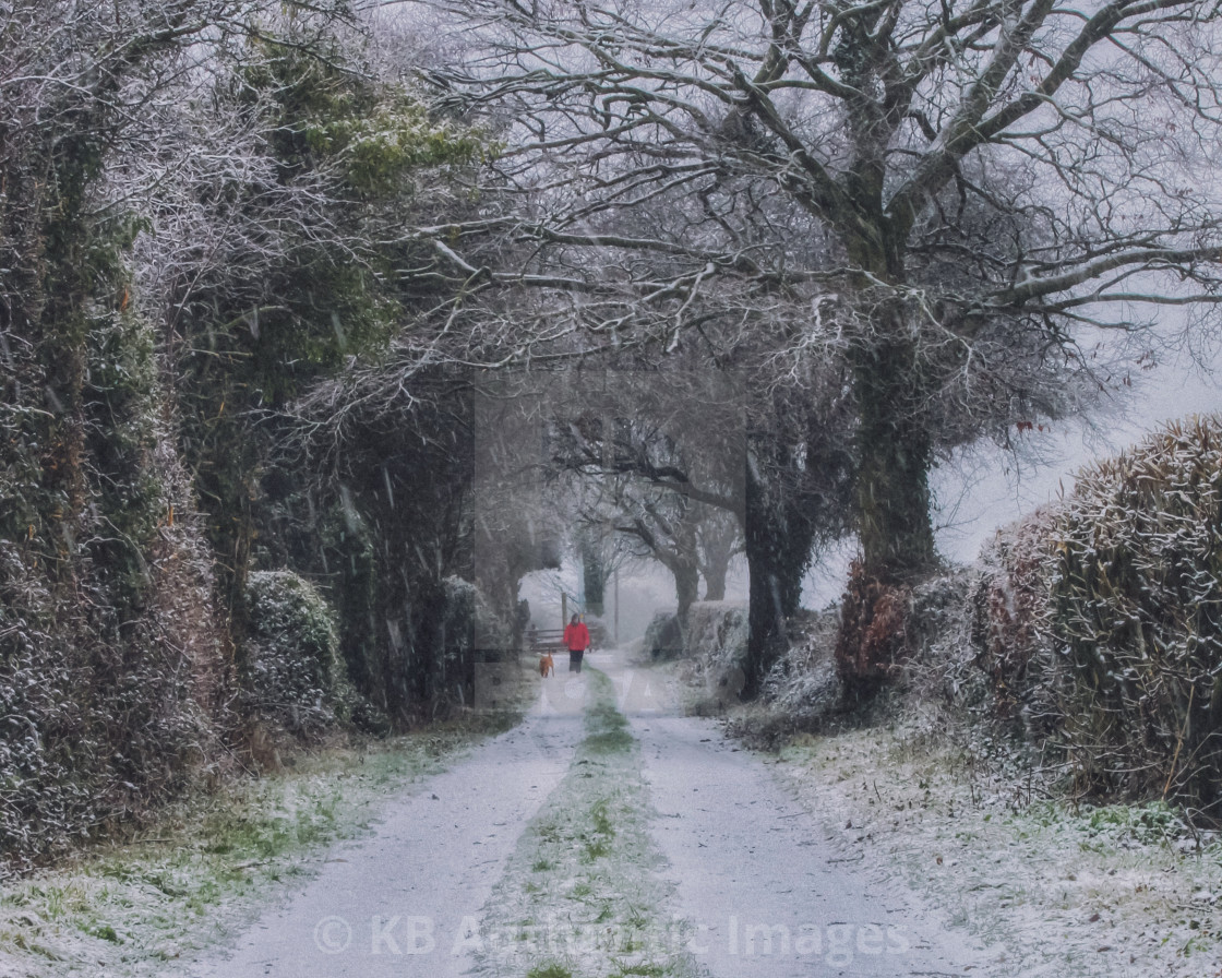 """""""Walking in the snow"""" stock image"""