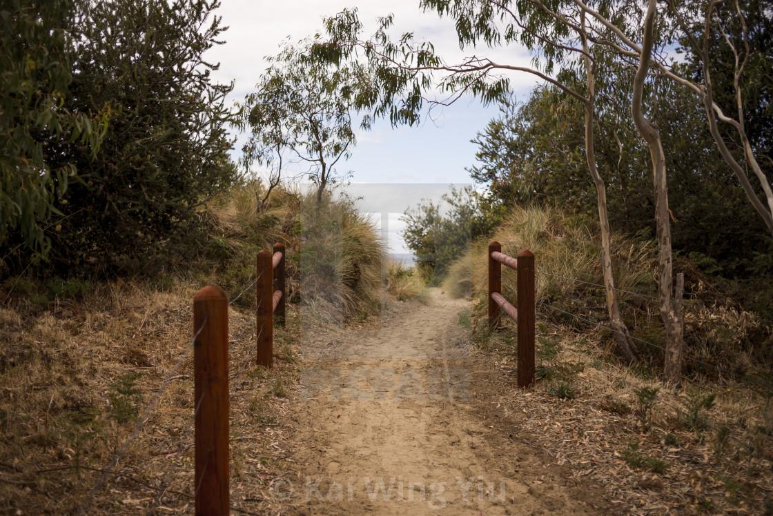 """The road to the beach, Tasmania"" stock image"