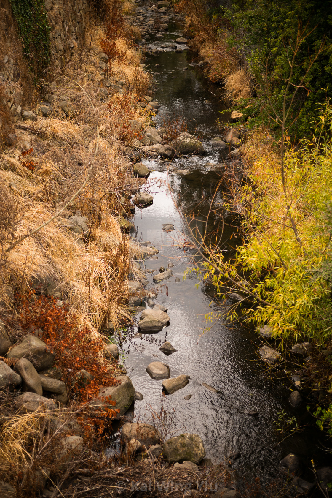 """A stream, Hobart"" stock image"
