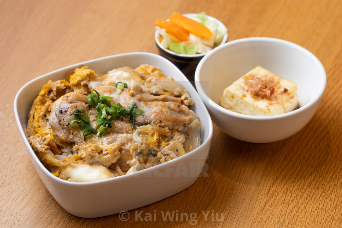 """Teriyaki chicken with tofu and rice"" stock image"