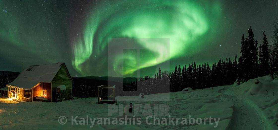 """""""Aurora Playtime"""" stock image"""
