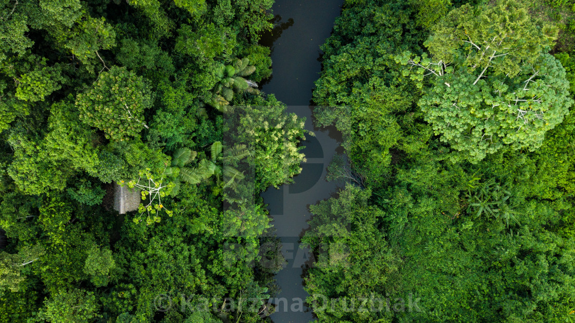 """Aerial photo of Amazon rain forest jungle with the river view in Peru"" stock image"