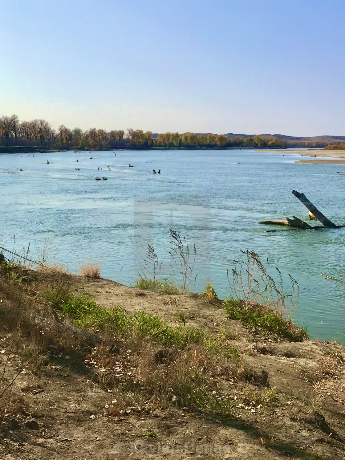 """Missouri River"" stock image"